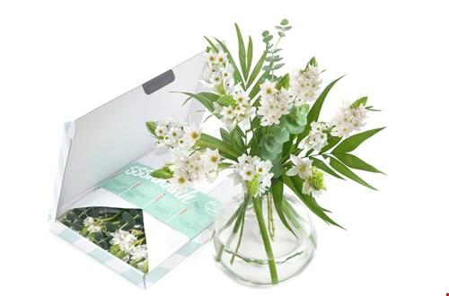 Bloompost bloemen verzenden per post online bestellen Flavourites