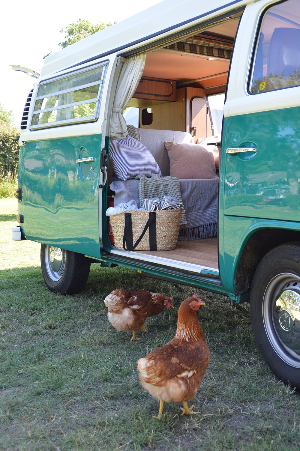 De kippetjes op de camping Bij ons waren er als de kippen bij!