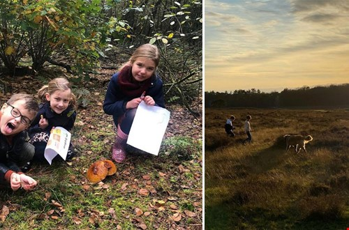 Voor kids zijn er zoveel speelse manieren om de natuur/omgeving te ontdekken! Op links zie je de herfstbingo van Kidsproof van afgelopen jaar!