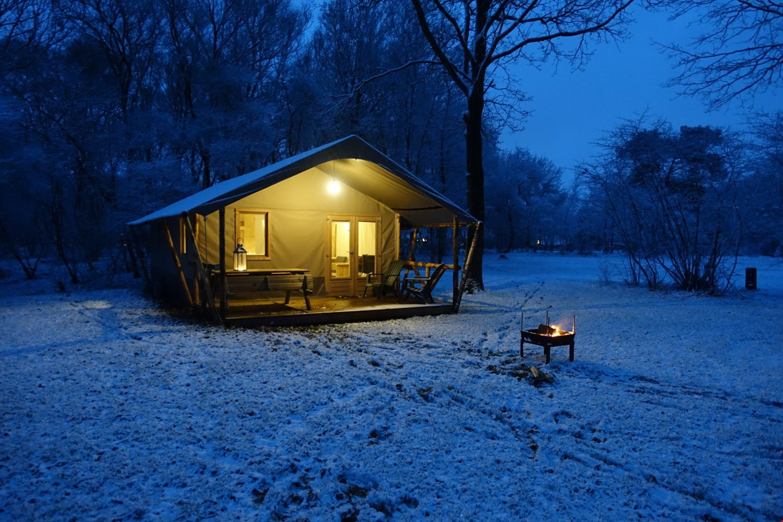Leuk: ga op wintersafari!