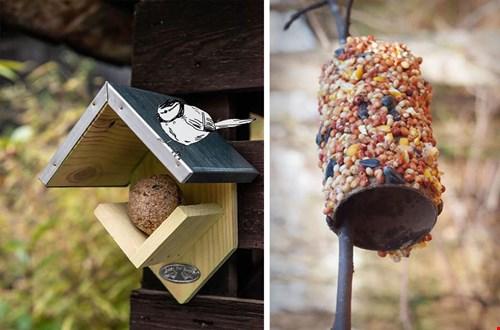 Ook vogels houden van pindakaas