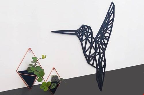 Spot een kolibrie gewoon in je woonkamer