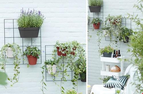 Verticaal tuinieren met plantenrekjes