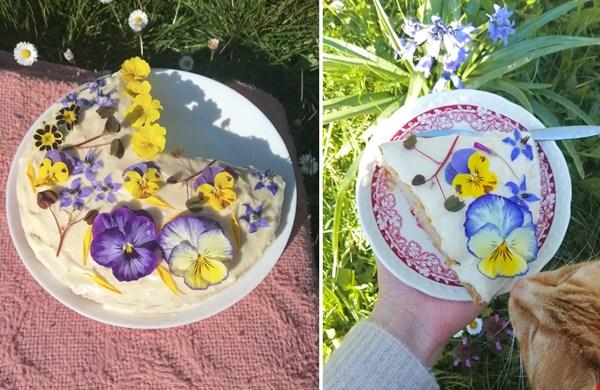 Dít is de lekkerste vegan vanille taart