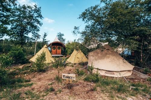 Je eigen campsite op pop-up glamping Appeltern