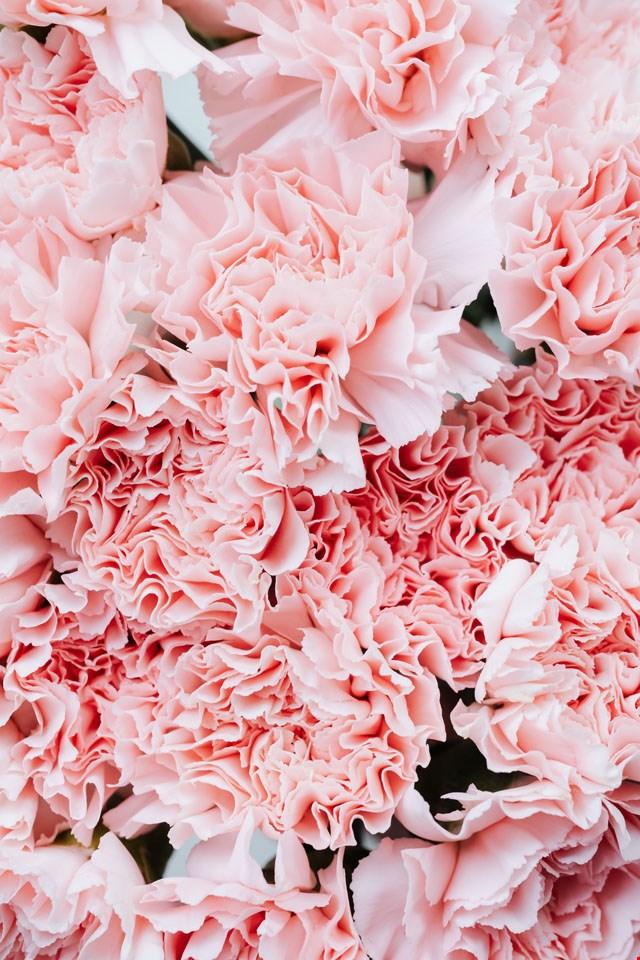 Wallpaper bloemen