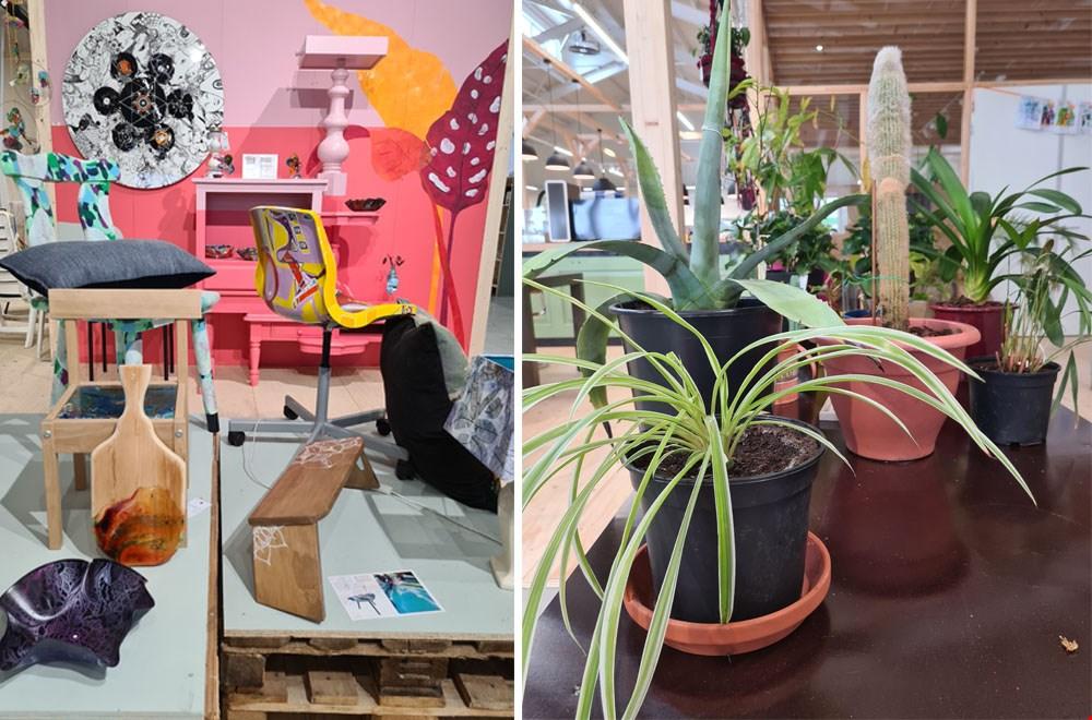 Upcycle-kunst en een plantenasiel bij Rataplan in Alkmaar