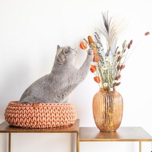 Kattenmand Sunny Basket