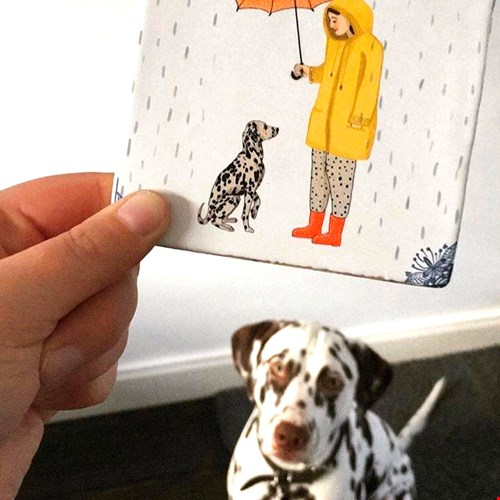 Story Tiles Hond Flavourites