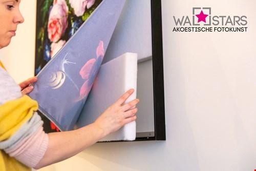 wallstars.nl
