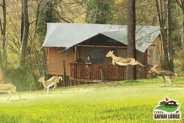 glamping4all.com