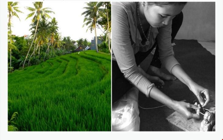 Duurzame productie op Bali, dat is wat Ronja wil
