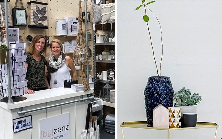 Bij de dames van Byzenz.nl kocht ik een prachtige bananenplant, bij Woonwinkelsiep.nl koos ik een gave plantenpot uit