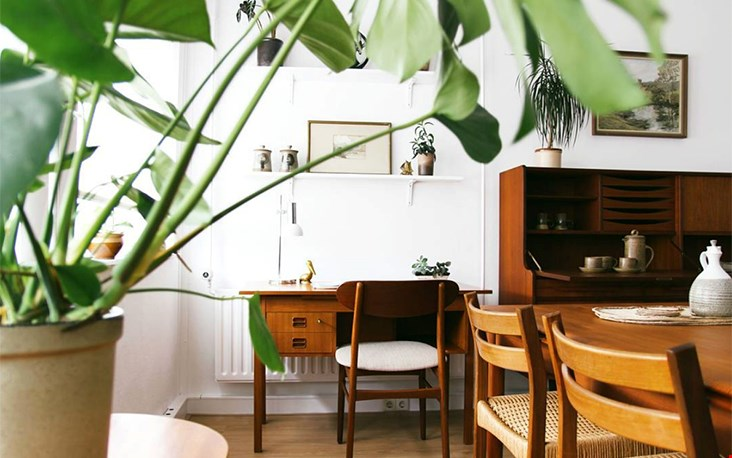 Kijkje in de showroom van Moineau