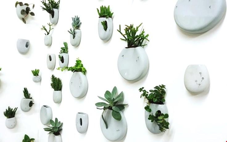 Groen aan je muur