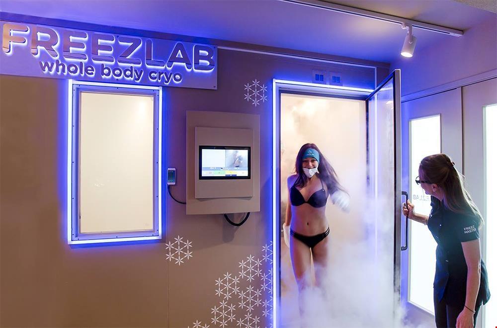 freezlab.nl