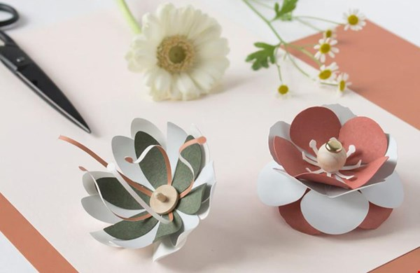 Prachtige papieren bloemen