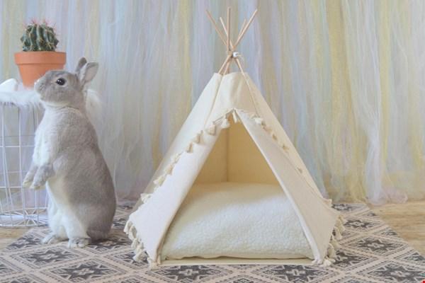 Glamping voor je konijn