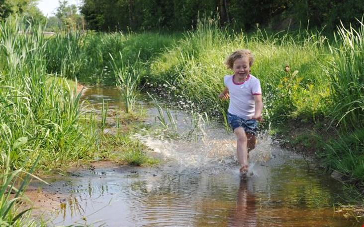 Loop door water, modder en gras