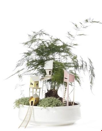 Boomhut voor je plantjes