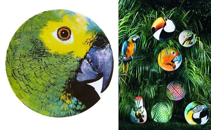 Voor een tropische sfeer: de borden uit de Olhar o Brazilië serie