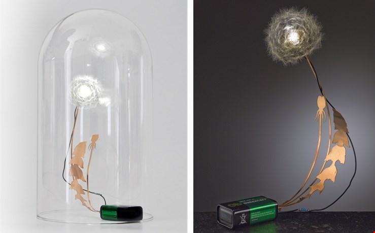 Zo mooi: lampje Dandelion