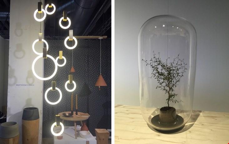 Lamoen links: Halo. Rechts: Pika Plant.