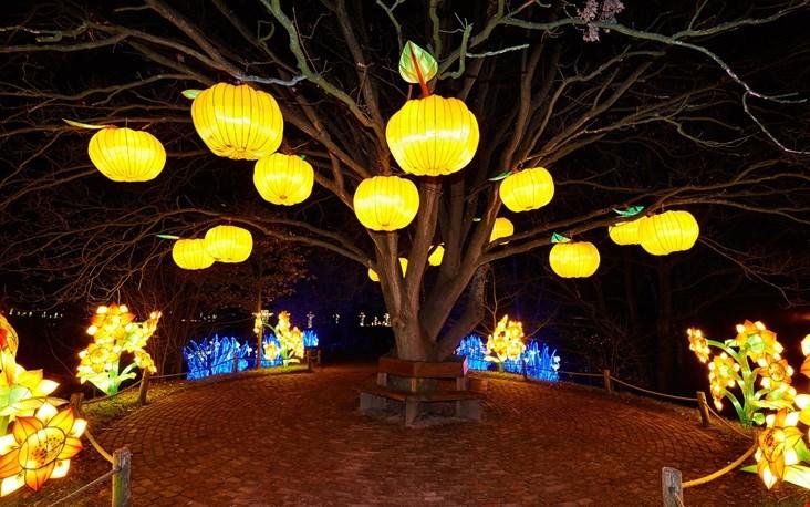 Een magisch lichtfestival!