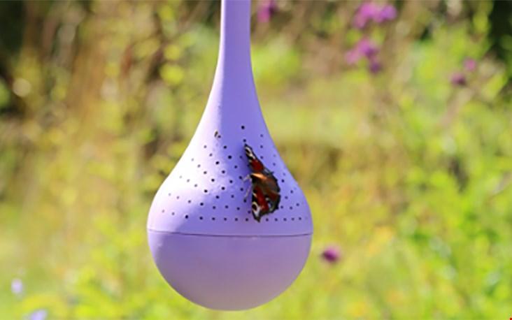 Nieuw uit Finland en nog niet te vinden in de Benelux!: de belightful vlinderoase!